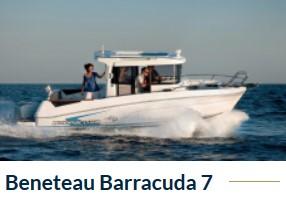 Barracuda_7