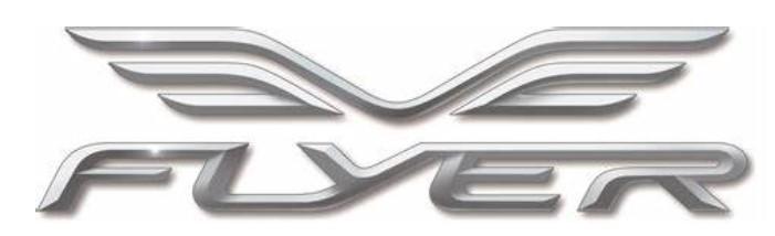 flyer_logo